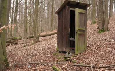Long Drop Toilet Survival
