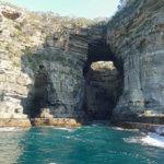 Amazing Tasman Island Cruises