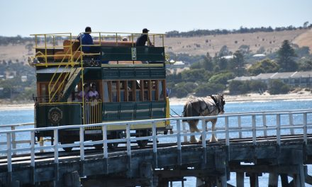 What are the best things to do in Victor Harbor?