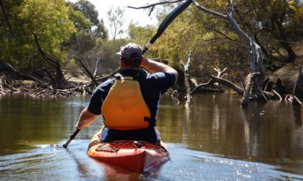 Kayaking Kangaroo Island – Harriet River