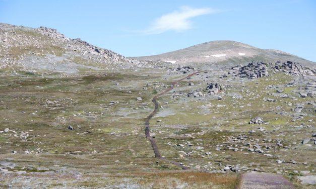 Mount Kosciuszko walk with Kids