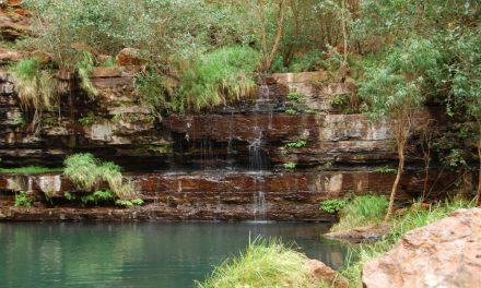 Karijini – Camping in Nature's Playground