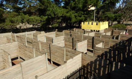 The Geelong maze – getting lost with kids