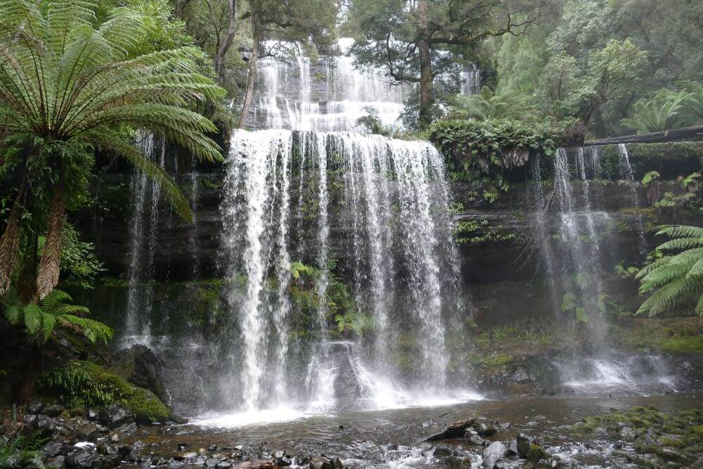 Mount Field Waterfalls and Walks