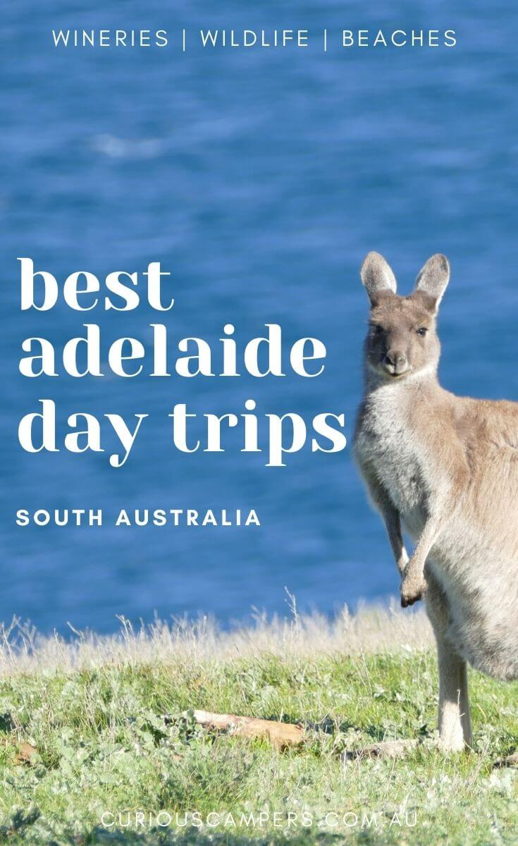 Day trips from Adelaide