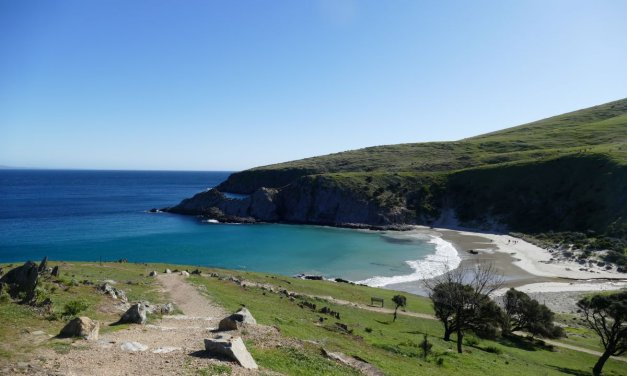 Blowhole Beach Visitor Guide