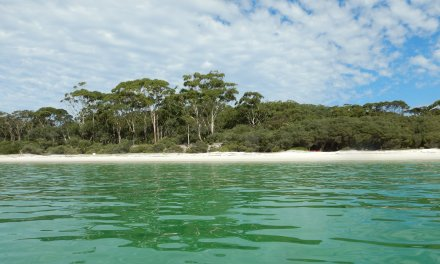 Things to do in Jervis Bay