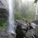 Springbrook Waterfalls & Walks | Full Guide