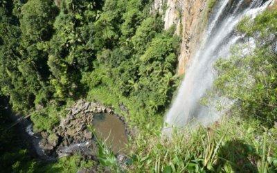 Walking Guide to Purling Brook Falls