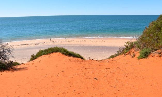 Things to do in Shark Bay and Denham